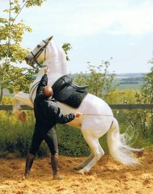 Michel Lerpiniere et son cheval Jeitoso lors du tournage du film ``Danse avec lui`` en 2005