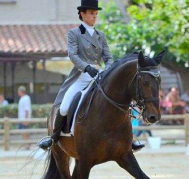 Photo de la prestation du cheval Viena lors de son passage au concours de dressage