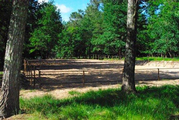 photo du parc d'entrainement de l'écurie lerpinière